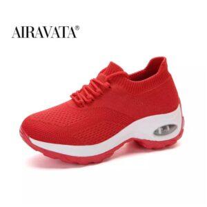 Airavata 1